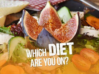 Which Diet Are You On? Image